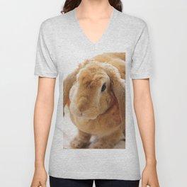 The Velveteen Rabbit Unisex V-Neck