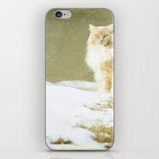 Hermione iPhone & iPod Skin
