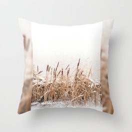 Snow on Typha reeds and frozen water Throw Pillow