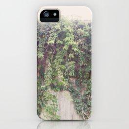 Rustic Vines iPhone Case