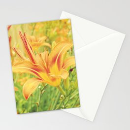 Lily Field Stationery Cards