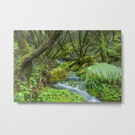 Deep in the green forest II Metal Print