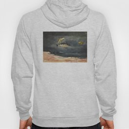 Vintage Winslow Homer Fish & Butterfly Painting (1900) Hoody