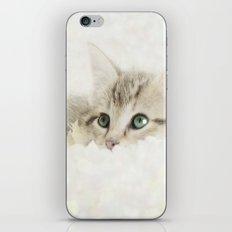 Snow Baby iPhone & iPod Skin