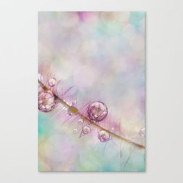 Smokey Bokeh Canvas Print