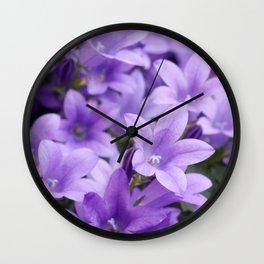 DREAMY - Purple flowers - Bellflower in the sun #1 Wall Clock