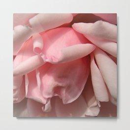 Bowed Rose 2 Metal Print