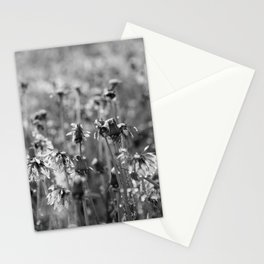 Dandelion Spring Showers Stationery Cards