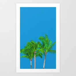 Palms tree Art Print