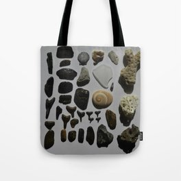 Beach Day Fossils Tote Bag