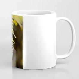 three ferns Coffee Mug