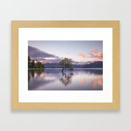 Wanaka Tree reflection Framed Art Print