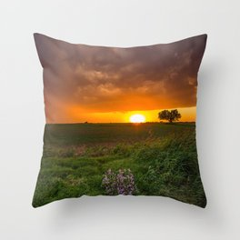 Autumn Sunset - Flowers and Tree on Oklahoma Plains Throw Pillow