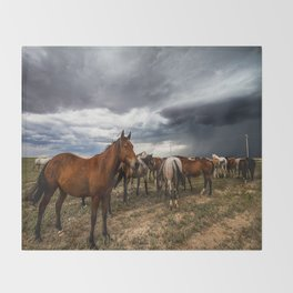 Pride - Horse Watches Over Herd as Storm Approaches Throw Blanket