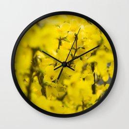 Yellow spring blooming Wall Clock