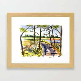 Gordon's Pond 2 Framed Art Print