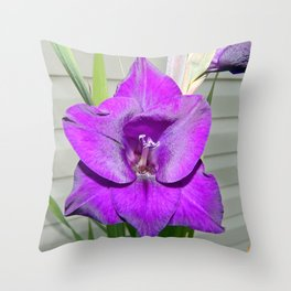 Purple Gladiola Throw Pillow