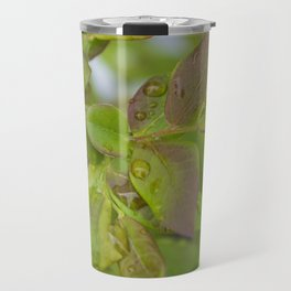 Blueberry Dew Travel Mug