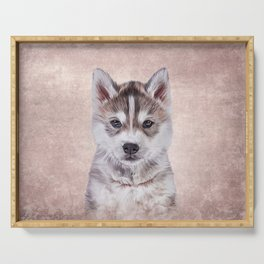 Drawing puppy Husky Serving Tray