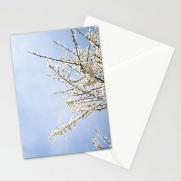 white beautiful tree Stationery Cards