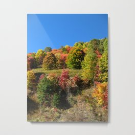 Clear Blue Autumn Metal Print