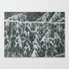 Natrual Decor Canvas Print