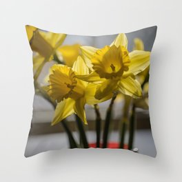 Daffodils in Red Crystal vase from my photography collection Throw Pillow