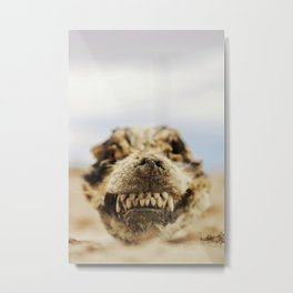 Mummified dog head Metal Print