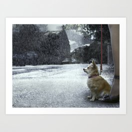 The dry dog Art Print