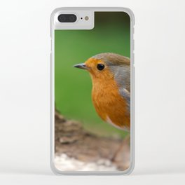 Robin Redbreast Clear iPhone Case