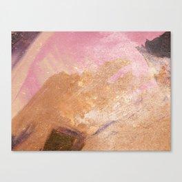 Planetary Pink Canvas Print