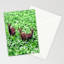 deers in the field. Stationery Cards
