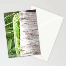 Just Hangin Out Stationery Cards