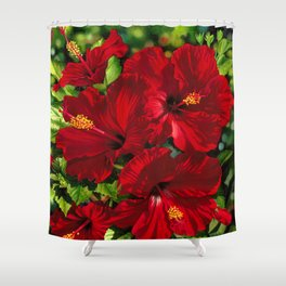Red Hibiscus 18 Shower Curtain