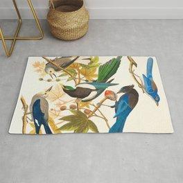 Vintage Birds Print Rug
