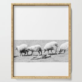 counting sheep Serving Tray