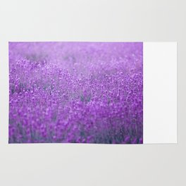 Rain on Lavender Rug
