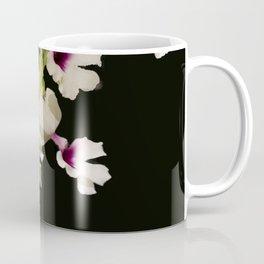 Calanthe rosea Orchid Coffee Mug