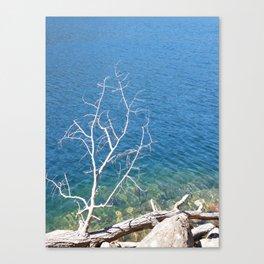 Acadia Dream Canvas Print