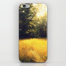 Spun Gold iPhone & iPod Skin