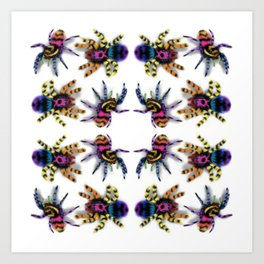 Rainbow jumping spiders Art Print