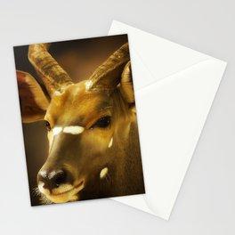 Nyala 2 Stationery Cards