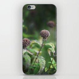 The Grey Allium Garden iPhone Skin
