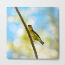 Yellow Bird - III Metal Print
