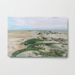 Desert Tufts Metal Print