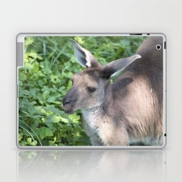 Kangaroo Laptop & iPad Skin