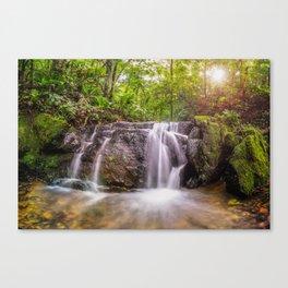 Sun light Water fall Canvas Print