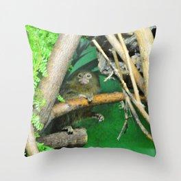 Marmoset Throw Pillow