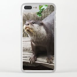 Stretching out for a curious cause Clear iPhone Case