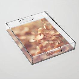 Soft Peach Acrylic Tray